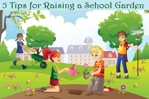 5 Tips For Raising A School Garden