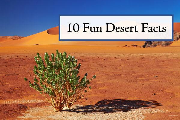 10 Fun Desert Facts